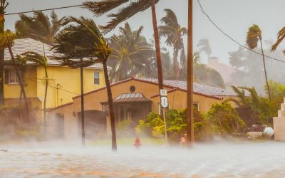 Why You Need to Protect Your Doors from the Elements during Hurricane Season