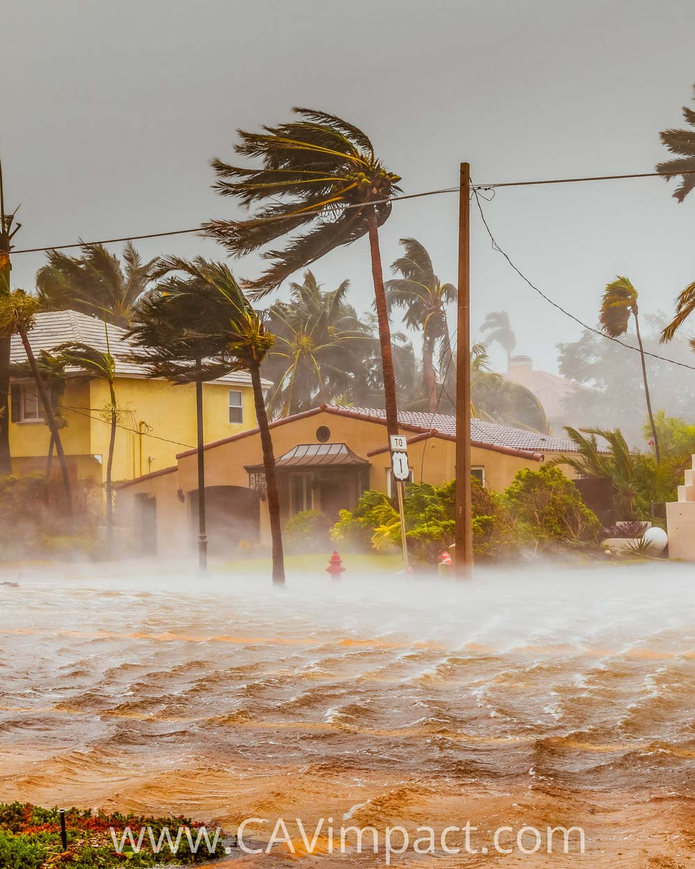 Protect Doors from the Elements during Hurricane Season